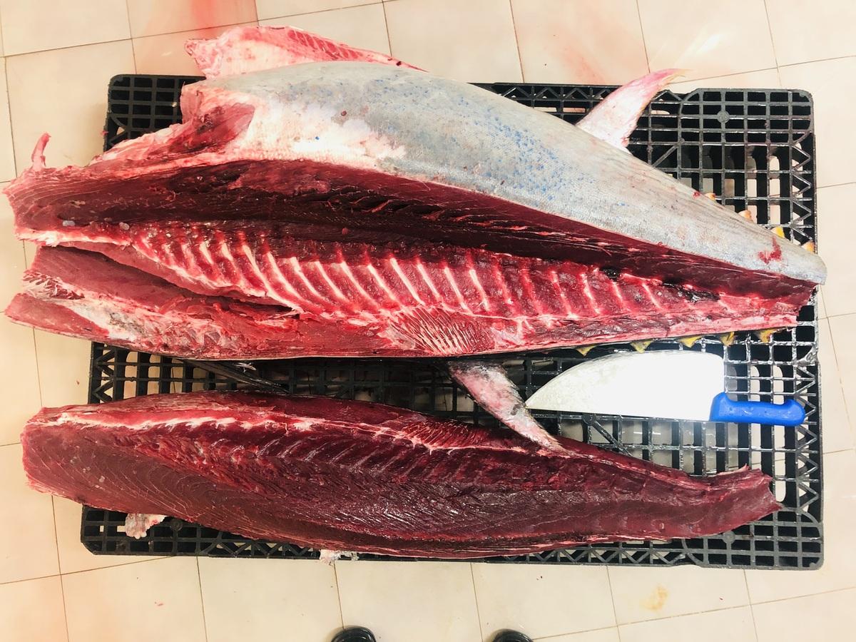 Llega la temporada del atún rojo: capturamos una pieza de 122 kilos